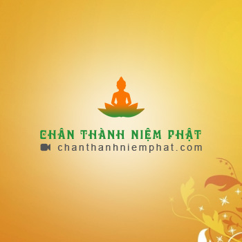 thiet ke website phat giao   chanthanhniemphat com
