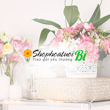 thiet ke website shop hoa tuoi   shophoatuoibi com