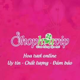 thiet ke website shop hoa tuoi   shophoavip com